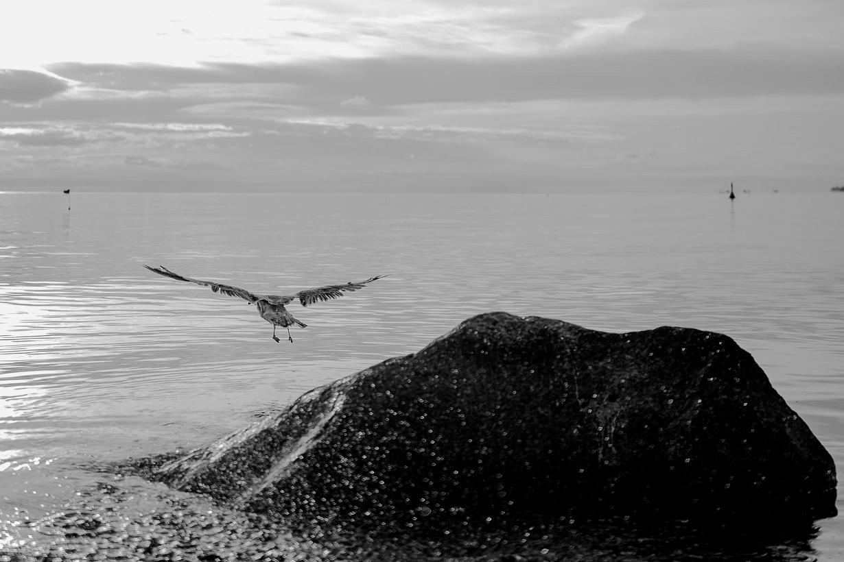 Ada & Kuba - sesja narzeczeńska nad morzem - Klif w Orłowie - Gdynia 31
